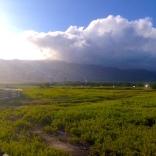 Maui Preserve
