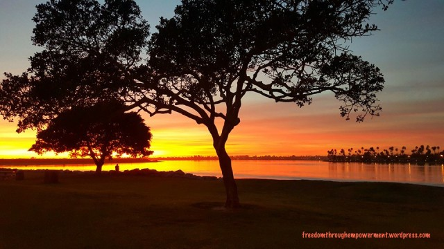 Sunset-Mission Bay