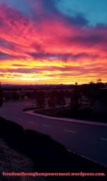 Sunrise-Torrey Pines Park