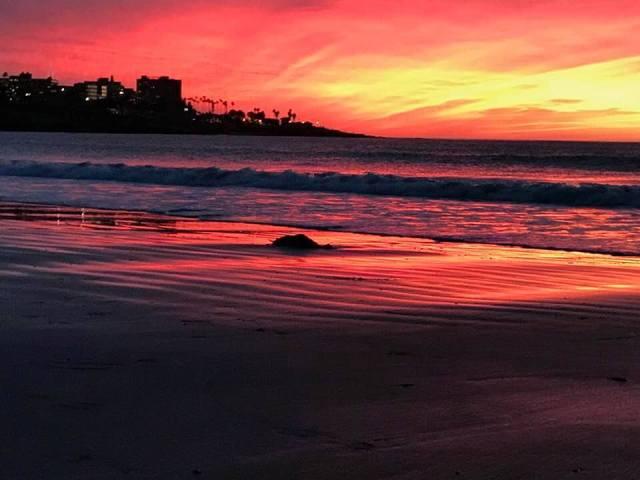 La Jolla Shores Apres Sunset