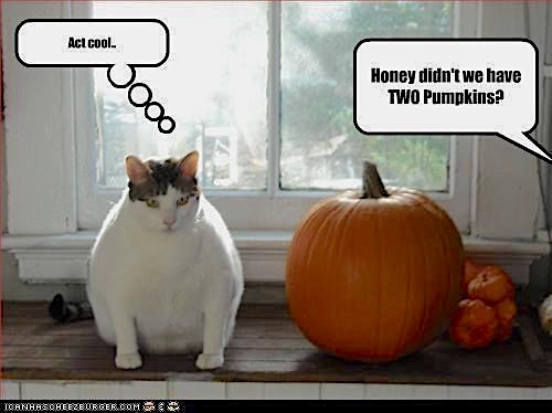 Halloween Funny